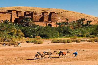 8 Days Morocco Tour / Tour 8 Days 7 Nights from Rabat /